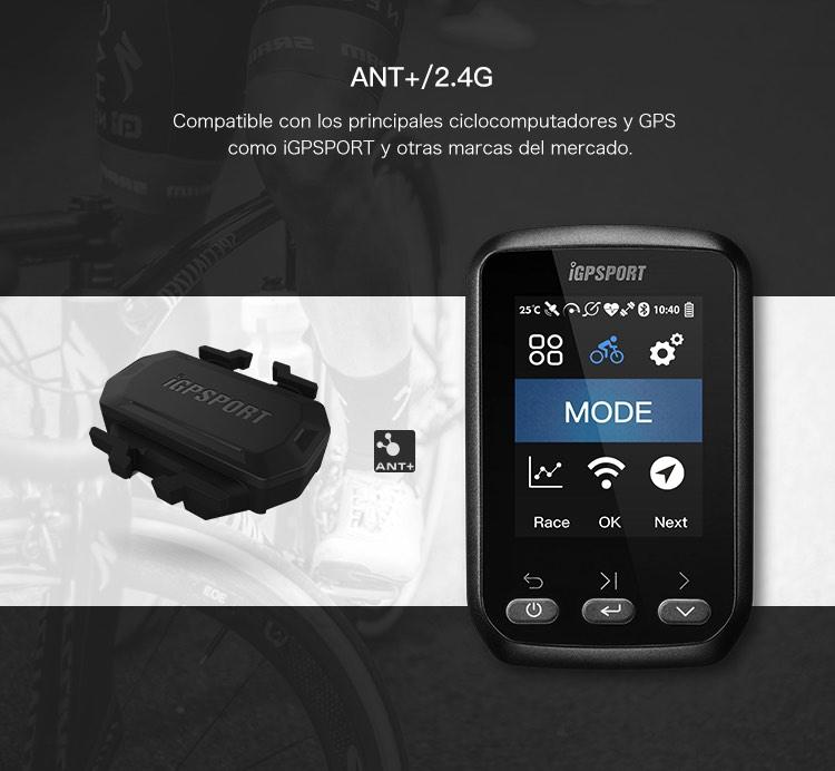 SPD61_des_04